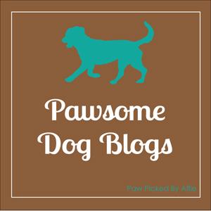 Pawsome Dog Blog