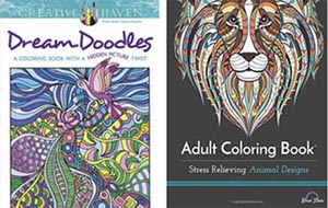 The Adult Coloring Book Craze