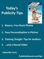 Publicity Tips–Bizarre, Free Stock Photos