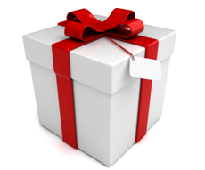 Free Holiday Gift Guide Kit