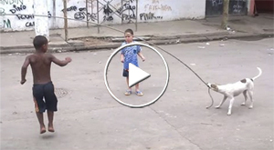 stray dog helping children jump rope in Brazil