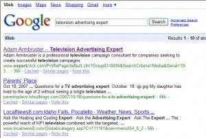 "Google results for ""television advertising expert"""