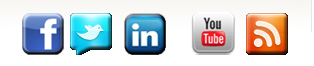 social media icons at The Publicity Hound blog