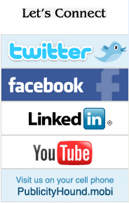 social media icons at The Publicity Hound website