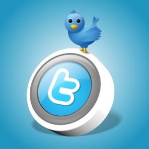 Twitter bird standing atop a Twitter button