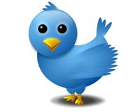 bliue twitter bird
