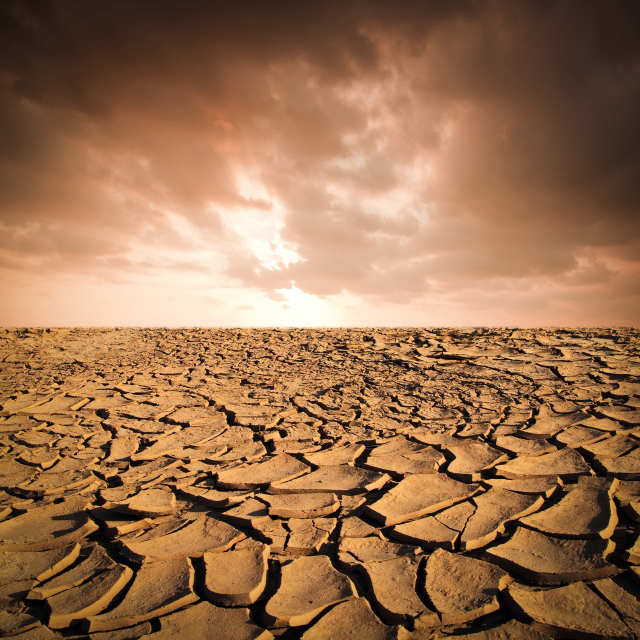parched and cracked landscape