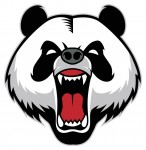 Panda 4.0 didn't kill the press release, it just refocused it