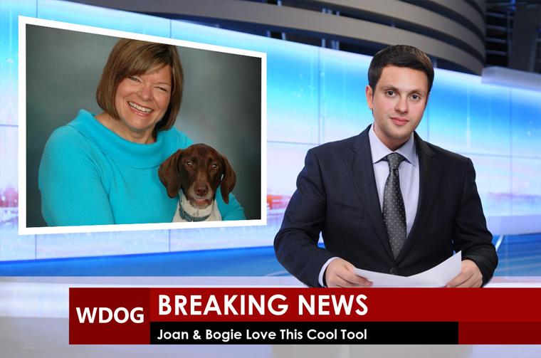 Photofunia--Joan & Bogie Love This Free Tool2