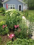 How to Publicize a Garden Walk and Other Local Events